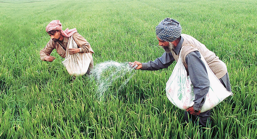 Fertiliser subsidy arrear at Rs 33,691 cr; may touch Rs 60K cr by March: FAI